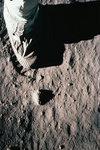 The Apollo Project