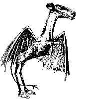 New Jersey Devil, from Philadelphia Evening Bullentin, January 1909